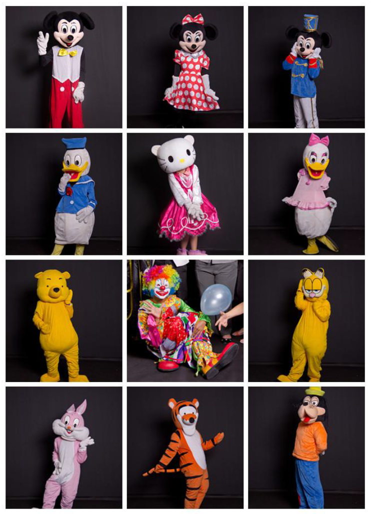 Cartoon Mascot Costumes